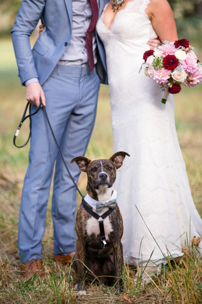 0057_8975-705x1058 Wedding